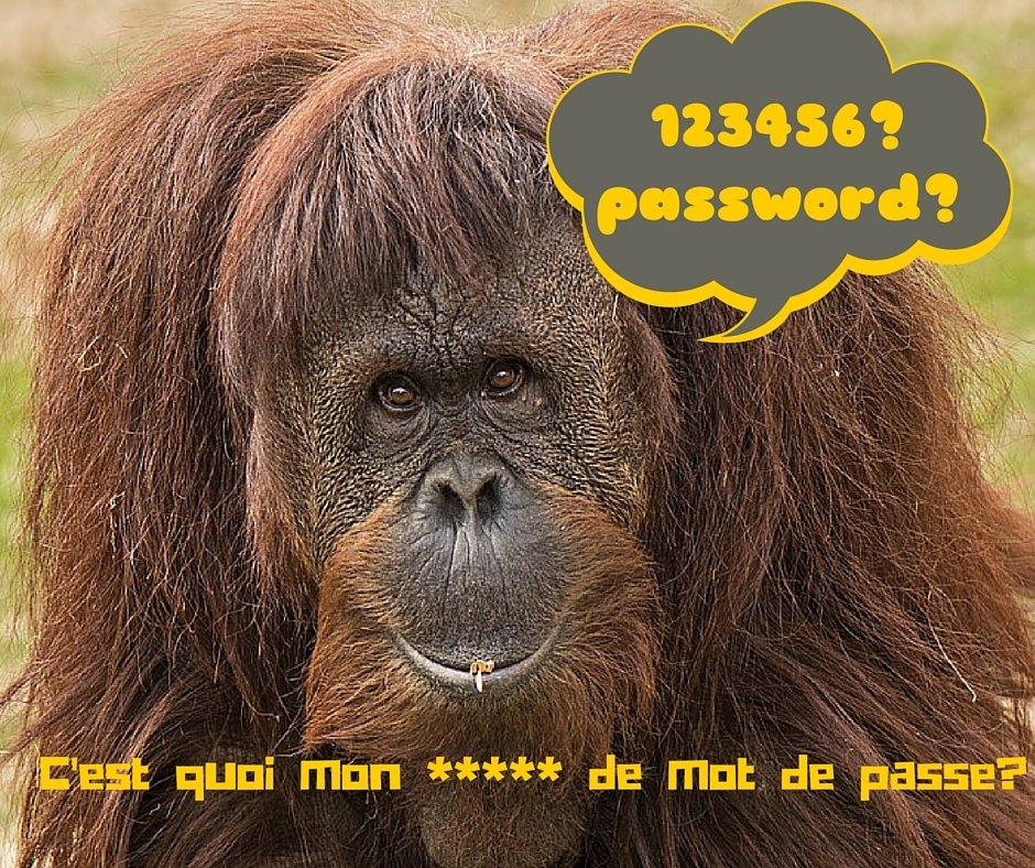 trus pour la création de mot de passe